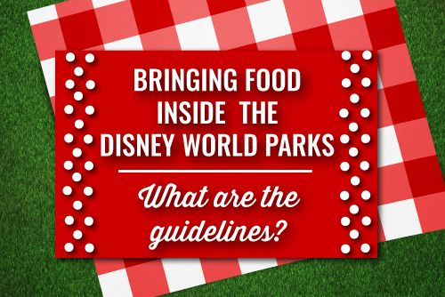 Can I Bring My Own Food Into the Disney World Parks?