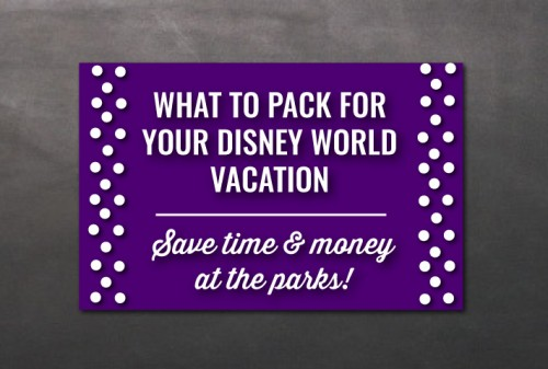 What to Pack for Your Disney World Vacation